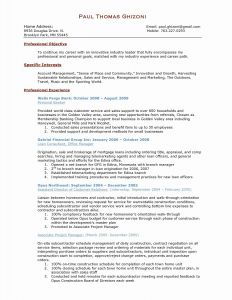 Account Manager Resume Template - Project Manager Resume Sample Luxury Product Manager Resume Template