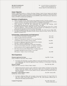 Accounting Careers Resume - Internet Invoice Profile Resume Examples Unique Cto Resume 0d