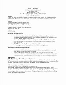 Ace Hardware Resume - Hardware Resume format Awesome Resume format for Experienced