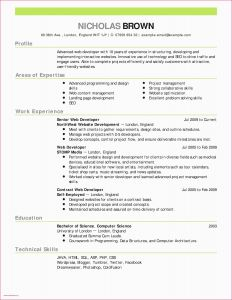 Actors Resume Template Word - Free Acting Resume Templa Best Example A Letter Head Cfo Resume