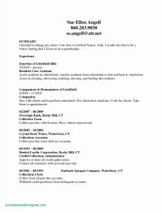 Administrative Resume - Administrative Resume Sample Best Admin Executive Resume format