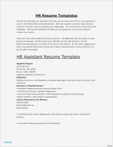 Advertising Resume - Advertising Resume Examples Resume Objective for Medical assistant