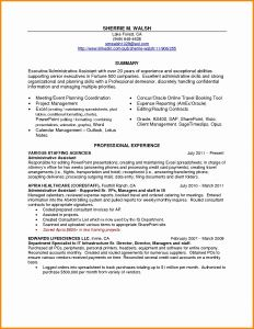 Animator Resume Template - Resume for Executive assistant Best Resume for Executive
