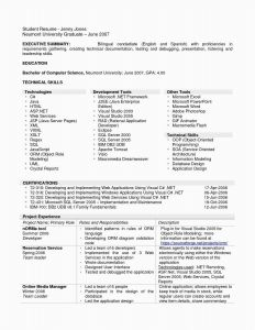 Animator Resume Template - 24 Free Project Executive Summary Template Sample