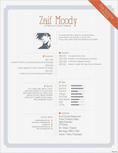 Animator Resume Template - Resume Template Samples Unique Awesome Free Printable Resume Lovely