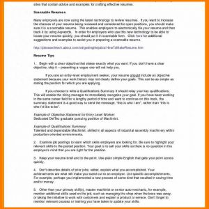 Auto Sales associate Job Description Resume - 11 12 Brief Description Of Sales associate