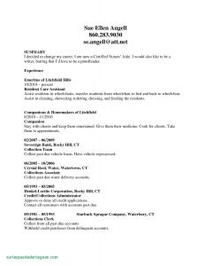 Automobile Cv Resume - 50 New Rn Sample Resume