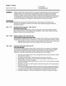 Automobile Sales Executive Resume - Beautiful Duties A Car Sales Executive Resume New Resume format