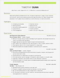 Automobile Salesperson Job Description Resume - Sample Resumes Sales