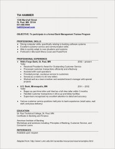 Banker Resume Template - Resume Templates for Customer Service Best Customer Service Resume