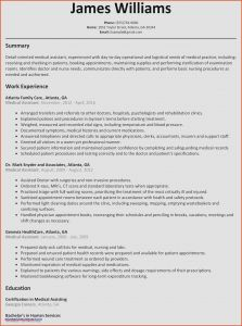 Basic Resume - Microsoft Word Resume Sample Fresh Best Federal Government Resume
