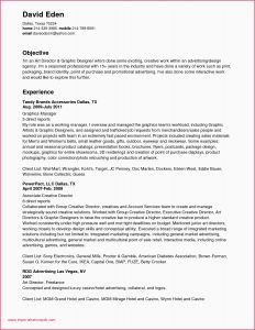 Bauer Resume Template - Creative Resume Graphic Designer Best Resume Template Awesome Resume