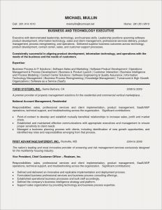 Best Sales Resume Template - Examples Excellent Resumes Lovely Best Sales Resume Luxury Best