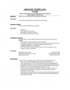 Boy Scout Resume Template - Sample Cover Letter for Cashier Position Free Tamplate