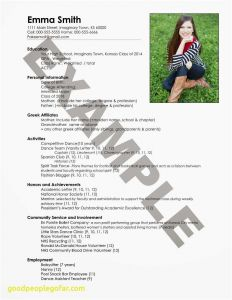 Business Administration Resume - Business Administration Resume Inspirational Resume with Picture