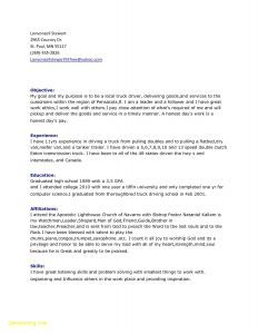 Car Driver Job Resume - 61 Awesome Truck Driver Resume