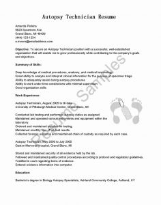 Car Mechanic Apprenticeship Resume - New Automotive Apprenticeship Resume New Resume format