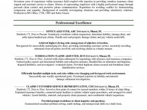 Car Rental Manager Resume - Car Rental Agent Job Description Resume Lovely Mercial Property