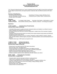 Car Rental Resume - Car Rental Manager Resume Elegant Professional Summary Resume Sample