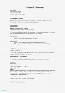 Car Sales Cv Example Resume - Sample Resume Summary Statements