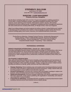 Car Salesman Job Description for Resume - Awesome Car Salesman Job Description for Resume New Resume format