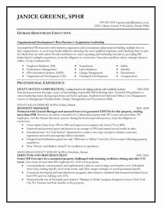 Career Change Resume Template - Career Change Resume Sample Awesome Resume Objective Statement Entry