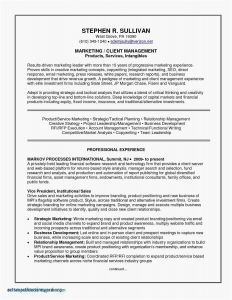 Careers In Finance Resume - Career Objectives for Resume Save Beautiful My Resume Work Objective