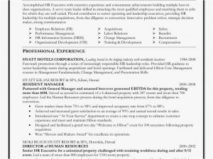 Ceo Resume Template - Ceo Resume Sample Doc – Executive Resume Template Doc Free Download