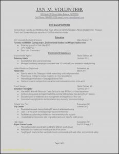Chemistry Resume Template - Job Resume Template Word Unique Professional Resume Templates Word