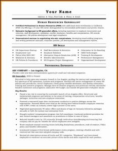 Child Care Resume Template - Child Care Resume Template