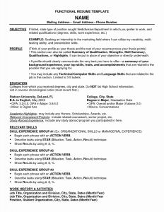 Chrono Functional Resume Template - Functional Resume Template Awesome Good Resume Objectives Samples