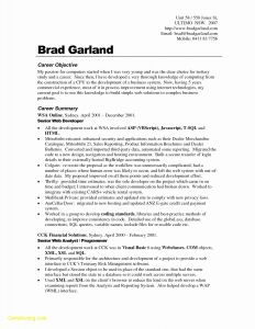 Chronological Resume Template - Chronological Resume format Download Fresh Resume Examples Download