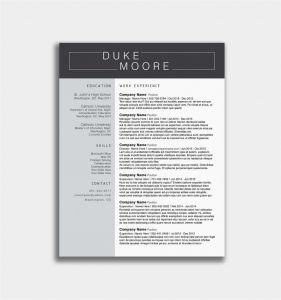 Chronological Resume Template Pdf - Sample Resume for Experienced Graphic Designer Best Samples