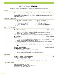 Cio Resume Template - Free Resume Template Downloads Awesome Elegant Pr Resume Template