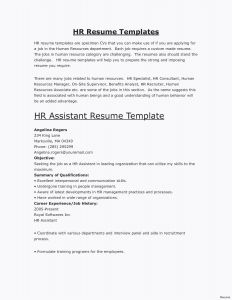 Cio Resume Template - Project Management Resume Samples