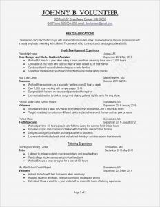 Cisa Resume - Lovely Civil Engineer Resume New Resume format Professional