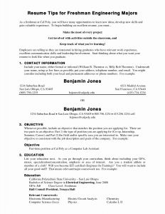 College Freshman Resume Template - College Freshman Resume Samples Paragraphrewriter