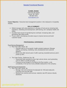 Combination Resume Template 2016 - Brilliant How to Make A Bination Resume