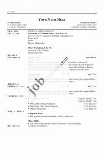 Computer It Resume - It Resume Writing Services Elegant Best Resume Writing Service