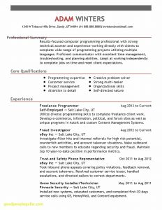 Computer Service Engineer Resume - Resume Website Examples New Resume Website Template Free