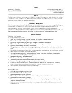 Construction Manager Resume Template - Project Manager Sample Resume New Awesome Elegant Grapher Resume