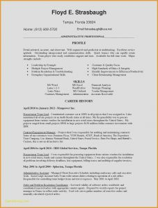 Copywriter Resume Template - Copywriter Cover Letter Fresh Copywriter Resume Unique Resume