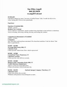 Counselor Resume Template - Medical Advisor Resume Valid Camp Counselor Resume Fresh Examples