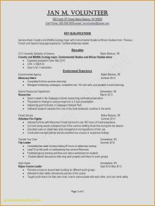 Cscareerquestions Resume Template - Resume Personal Projects Resume Personal Statement Examples Resume