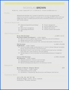 Culinary Resume Template - Awesome Culinary Arts Resume Template