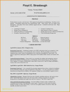 Custodian Resume Template - Custodian Cover Letter Luxury Resume Templates Best Resume Template