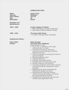 Dating Resume Template - Cool Resume Sample Teacher Resume Example Awesome Resume Examples 0d