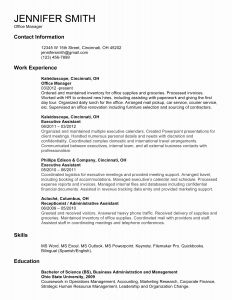 Dealer Resume - Examples Resume Summary Inspirational Summary Example for Resume