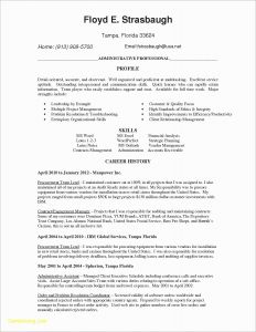 Desktop Support Resume - It Support Resume Beautiful Tech Support Resume Skills Inspirational