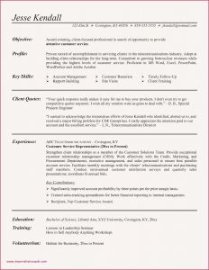 Director Resume Template - Sample Resume Experienced Marketing Professional Marketing Director